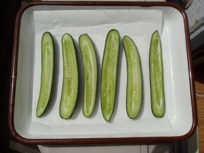 干し野菜 きゅうり