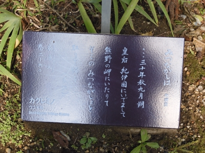 DSCN9205.JPG