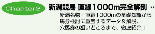 新潟芝1000m「穴馬の選出法」