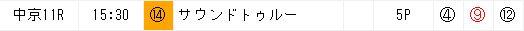 12月3日の中京11Rの推奨穴馬9番1着