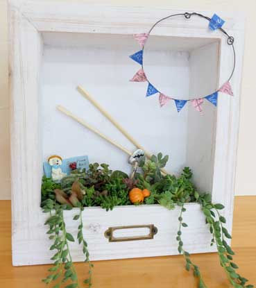 多肉植物の額縁ガーデンを作ろう!!