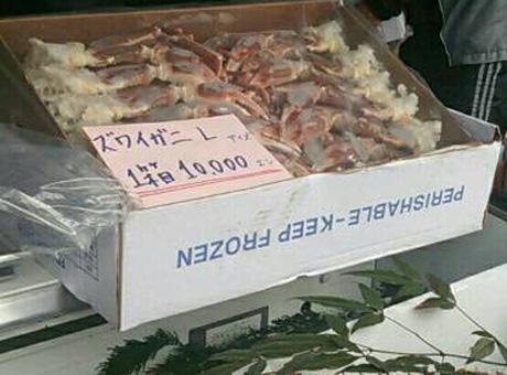 ズワイガニ5kg10000円