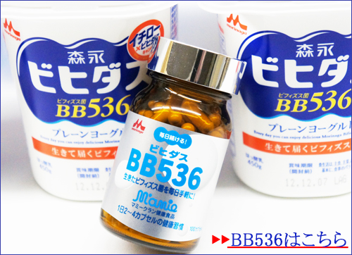 BB536サプリ