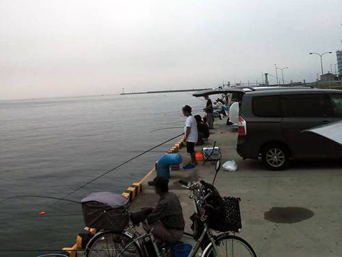 松阪港でボラ釣り