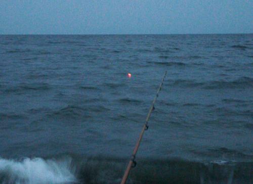 津市の海岸でセイゴ釣り