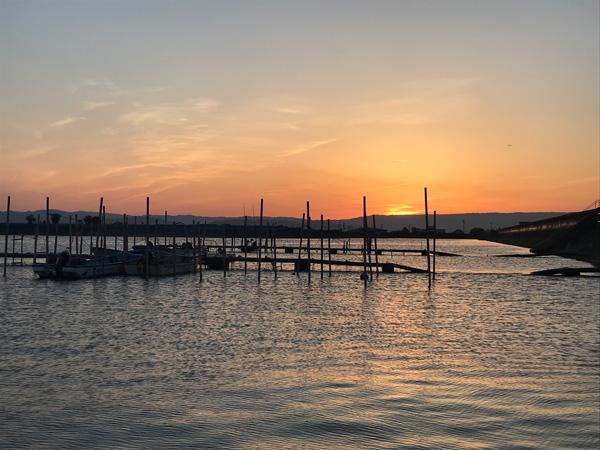 穴場の漁港
