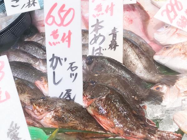 ガシラ680円
