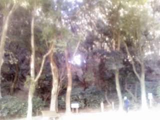 画像0231.jpg