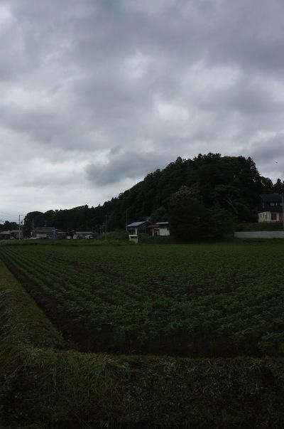 sDSC01167.jpg