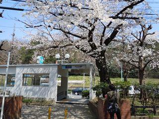 代々木公園駅