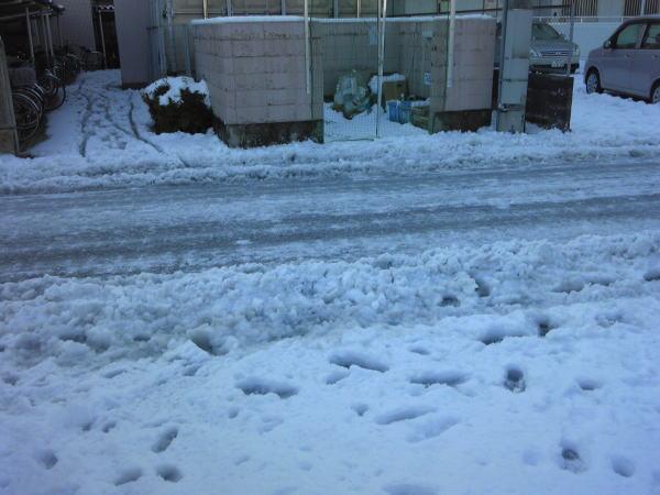 snow130116