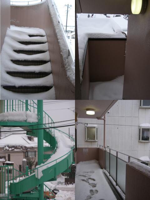 snow140214.1