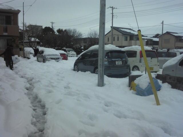 snow140214.4