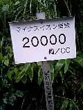 080813_0643~0001-0001.jpg