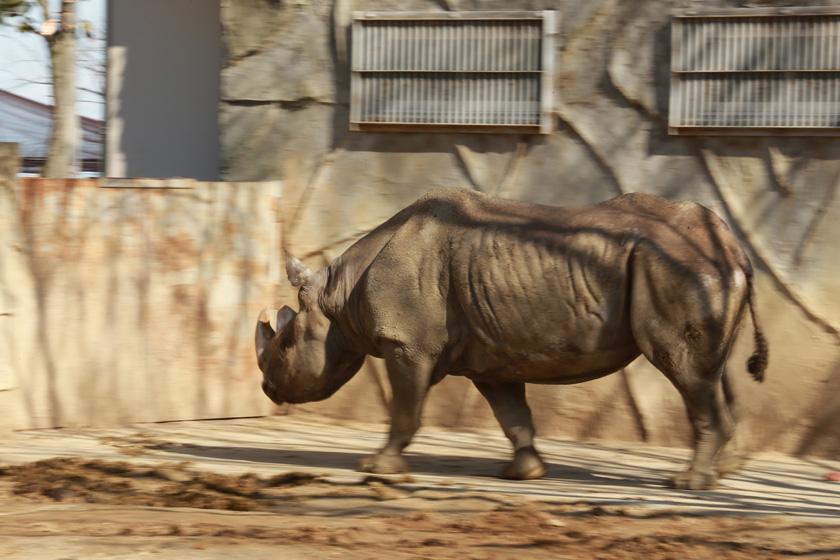 2014動物園_05