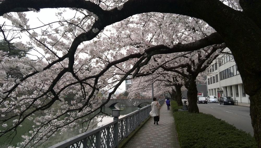 ishikawa_kenchomae_0001.jpg