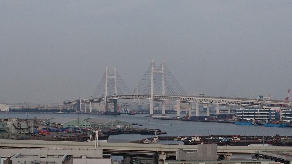 神奈川県 港が見える丘公園(ベイブリッジ).JPG