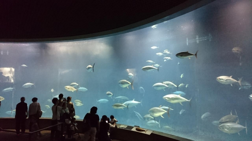 東京都江戸川区−葛西臨海水族園?_R.jpg