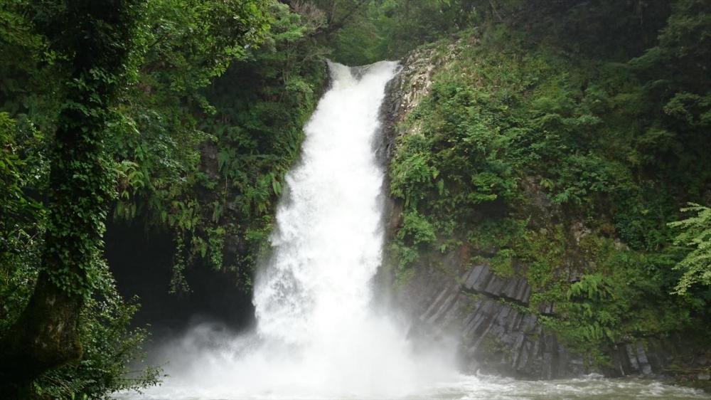 静岡県−浄蓮の滝?_R.jpg