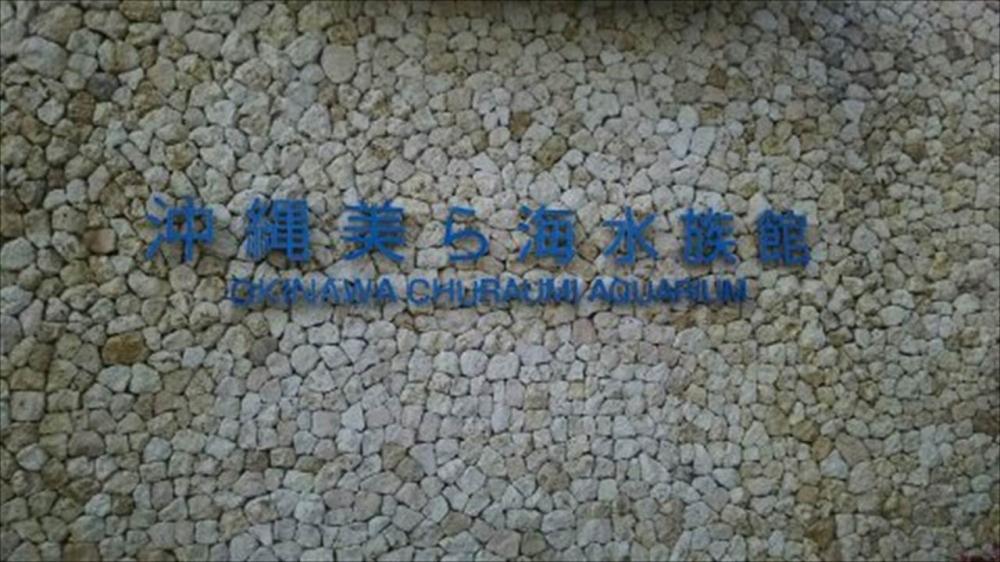 沖縄県 沖縄美ら海水族館1_R.jpg