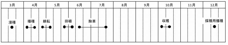 20180316本田暦.jpg
