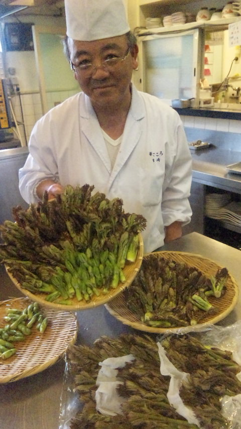23年の大涌谷の山菜.jpg