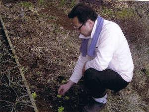 山菜採りの現場