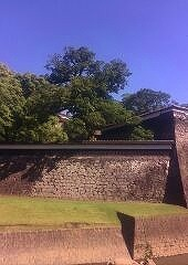 「陶々徒(TOTOTO )2015 熊本城
