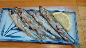 鵡川産本シシャモ・焼き