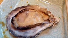 小長井産牡蠣・蒸し