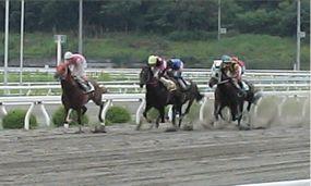 20090712第7レース1