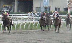 20090712第7レース2