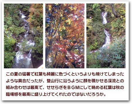紅葉と渓流のせせらぎ
