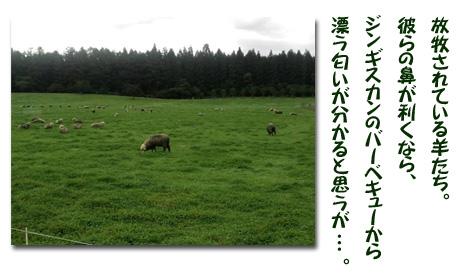 Honbun2-2jpg.jpg