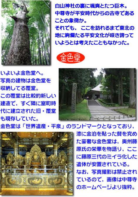 s_Honbun-konjiki.jpg