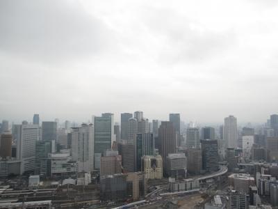 スカイタワービルから見た大阪