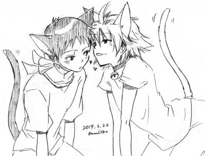 シンカヲ222