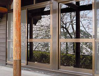 窓桜.jpg