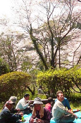 花見昼食.jpg