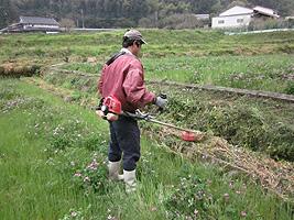 草刈り山下.jpg