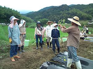 苗植えの講習s.jpg