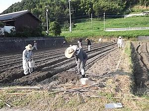 大豆種蒔き3郎s.jpg