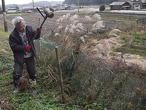 野菜畑柵の修理1s.jpg