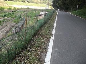 お野菜畑の電柵下の草刈り2s.jpg