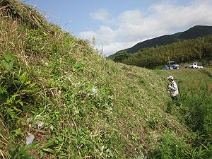 川側土手草刈りs.jpg