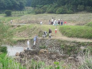 さつまいも畑で苗植え、水のバケツリレーs.jpg