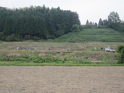 9郎を耕耘中、川向こうではサツマイモの苗植えm.jpg