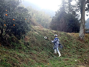 裏草刈り0198.jpg