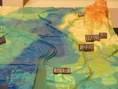 東京岩盤.jpg
