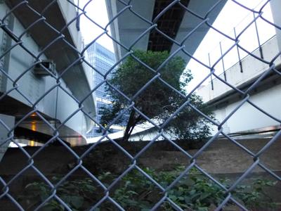 竹橋門9.jpg